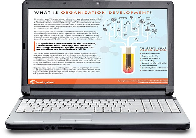 org dev laptop pic