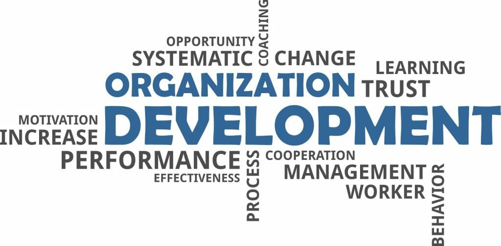 A selection of words that describe organization development